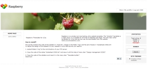 Raspberry from ucoz templates